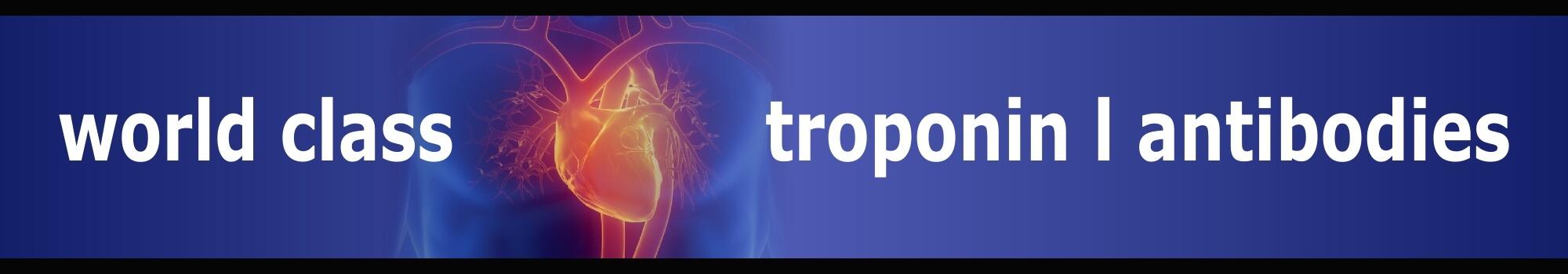 Troponin_V1_FINAL28Aug15